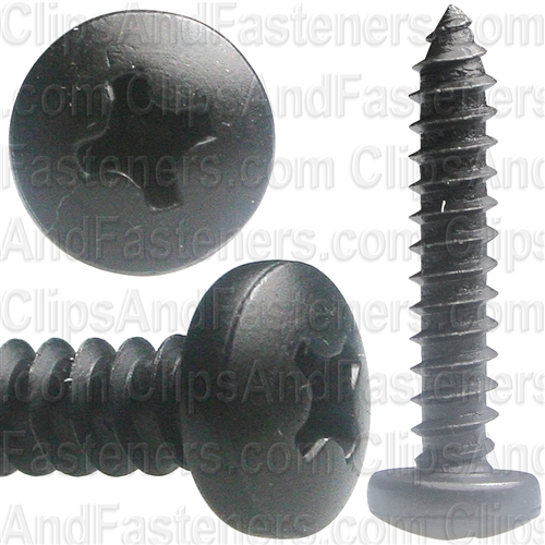 #10 X 1 Phil Pan Hd T.S. - Black Oxide