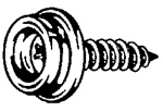 Phillips Head Stainless Steel Screw #10 X 5/8