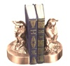 Wall Street - Sitting Bull and Bear Bookends