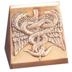 Medical Symbol Bookends