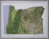 Raised Relief Map of Oregon