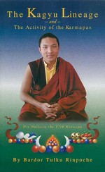 Kagyu Lineage and The Activity of the Karmapas <br>  By: Bardor Tulku Rinpoche