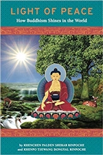 Light of Peace: How Buddhism Shines in the World
