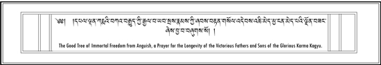 Long Life Prayers for Tai Situ, Gyaltsap, Jamgon Kongtrul Rinpoche and others.