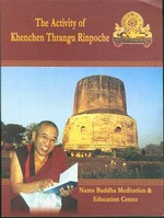 Activity of Khenchen Thrangu Rinpoche <br> By Namo Buddha Meditation and Education Center