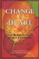 Change of Heart, The Bodhisattva Peace Training