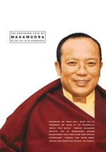 Profound Path of Mahamudra, DVD<br>  By: HE Tai Situ Rinpoche