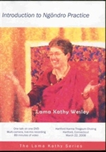 Introduction to Ngondro Practice, DVD <br>  By: Lama Kathy Wesley