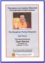 Teachings on Lojong Practice, DVD <br>  By: Ponlop Rinpoche