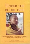 Under the Bodhi Tree, DVD<br>By: H.H. the 17th Karmapa at the 2003/2004 Kagyu Monlam