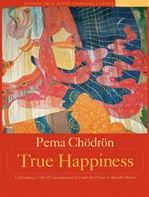 True Happiness, 6 Audio CDs<br> By: Pema Chodron