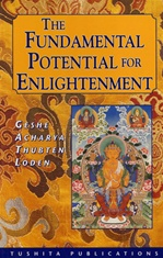 Fundamental Potential for Enlightenment