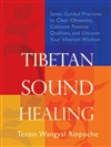 Tibetan Sound Healing: Seven Guided Practices for Clearing Obstacles, Accessing Positive Qualities, and Uncovering your Inherent Wisdom <br> By: Tenzin Wangyal Rinpoche