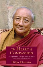 Heart of Compassion: A Commentary on the Thirty-seven Practices of the Bodhisattva <br> By: Dilgo Khyentse