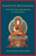 Gampopa's Mahamudra: The Five Part Mahamudra of the Kagyu