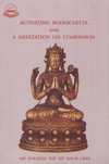 Activating Bodhichitta &  Meditation on Compassion