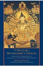 Nectar of Manjushri's Speech: A Detailed Commentary on Shantideva's Way of the Bodhisattva (Paperback)