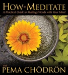 How to Meditate:  A Practical Guide to Making Friends with Your Mind With Pema Chodron (Audio CD) <br> By: Pema Chodron