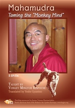 Mahamudra: Taming the Monkey Mind, Mingyur Rinpoche