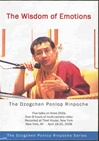 Wisdom of Emotions, DVD <Br> By: Dzogchen Ponlop Rinpoche