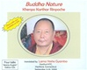 Buddha Nature, CD <br> By: Khenpo Karthar Rinpoche