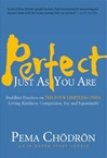 Perfect Just As You Are: Buddhist Practices on the Four Limitless Ones—Loving-Kindness, Compassion, Joy, and Equanimity