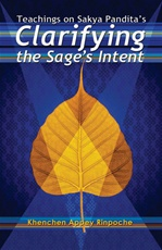 Clarifying the Sage's Intent