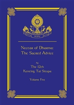 Nectar of Dharma: The Sacred Advice, Volume Five <br> Tai Situ Rinpoche