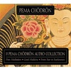 Pema Chodron Audio Collection