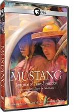 Mustang: Journey of Transformation
