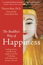Buddha's Way of Happiness: Healing Sorrow, Transforming Negative Emotion, and Finding Well-Being in the Present Moment