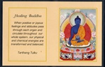 Folding Thangka: Healing Buddha