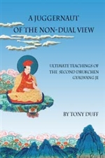 Juggernaut of the Non-Dual View: Ultimate Teachings of the Second Drukchen