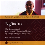 Ngondro: The Foundational Practices, Part 1 The Four Thoughts MP3 CD  By: Yongey Mingyur Rinpoche