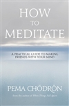 How to Meditate: A Practical Guide to Making Friends with Your Mind,  Pema Chodron