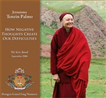 How Negative Thoughts Create Our Difficulties (DVD) Jetsunma Tenzin Palmo
