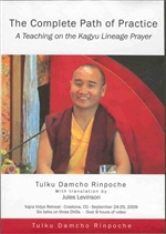 Complete Path of Practice (DVD) By: Tulku Damcho Rinpoche