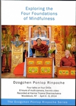 Four Foundations of Mindfulness, DVD