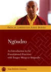 Ngondro: An Introduction to the Foundational Practices DVD <br> By: Mingyur Rinpoche