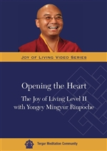 Opening the Heart The Joy of Living Level II with Yongey Mingyur Rinpoche (DVD) <br> By: Mingyur Rinpoche