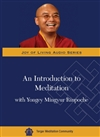 Introduction to Meditation with Yongey Mingyur Rinpoche DVD <br> By: Mingyur Rinpoche
