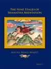 Nine Stages of Shamatha Meditation, Series 1 DVD <br> By: Lama Dudjom Dorjee