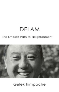 Delam - The Smooth Path to Enlightenment