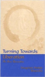 Turning Towards Liberation
