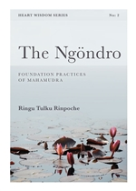 Ngondro: Preliminary Practices to Mahamudra