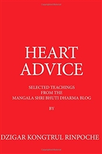 Heart Advice: Selected Teachings from the MSB Dharma Blog, Dzigar Kongtrul