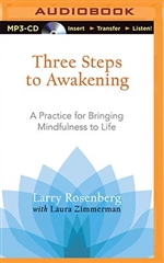 Three Steps to Awakening MP3 CD