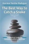 The Best Way to Catch a Snake by Karma Yeshe Rabgye