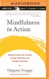 Mindfulness in Action MP3