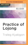 Practice of Lojong: MP3 CD Traleg Kyabgon Rinpoche